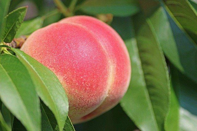 peach-images