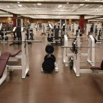 Weight-Training-Equipment